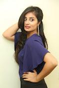 Bhanu sri mehra sizzling photos-thumbnail-9