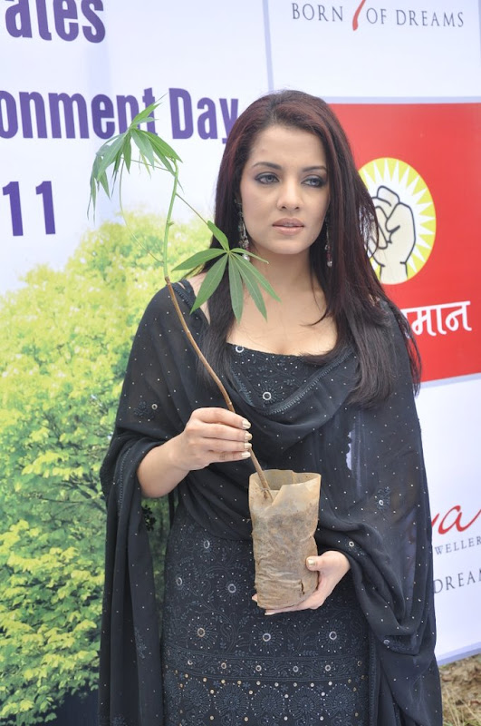 Celina Jaitley Hot Stills  Diya Diamonds World Environment Day hot images