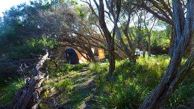 campsite in the Australian bush