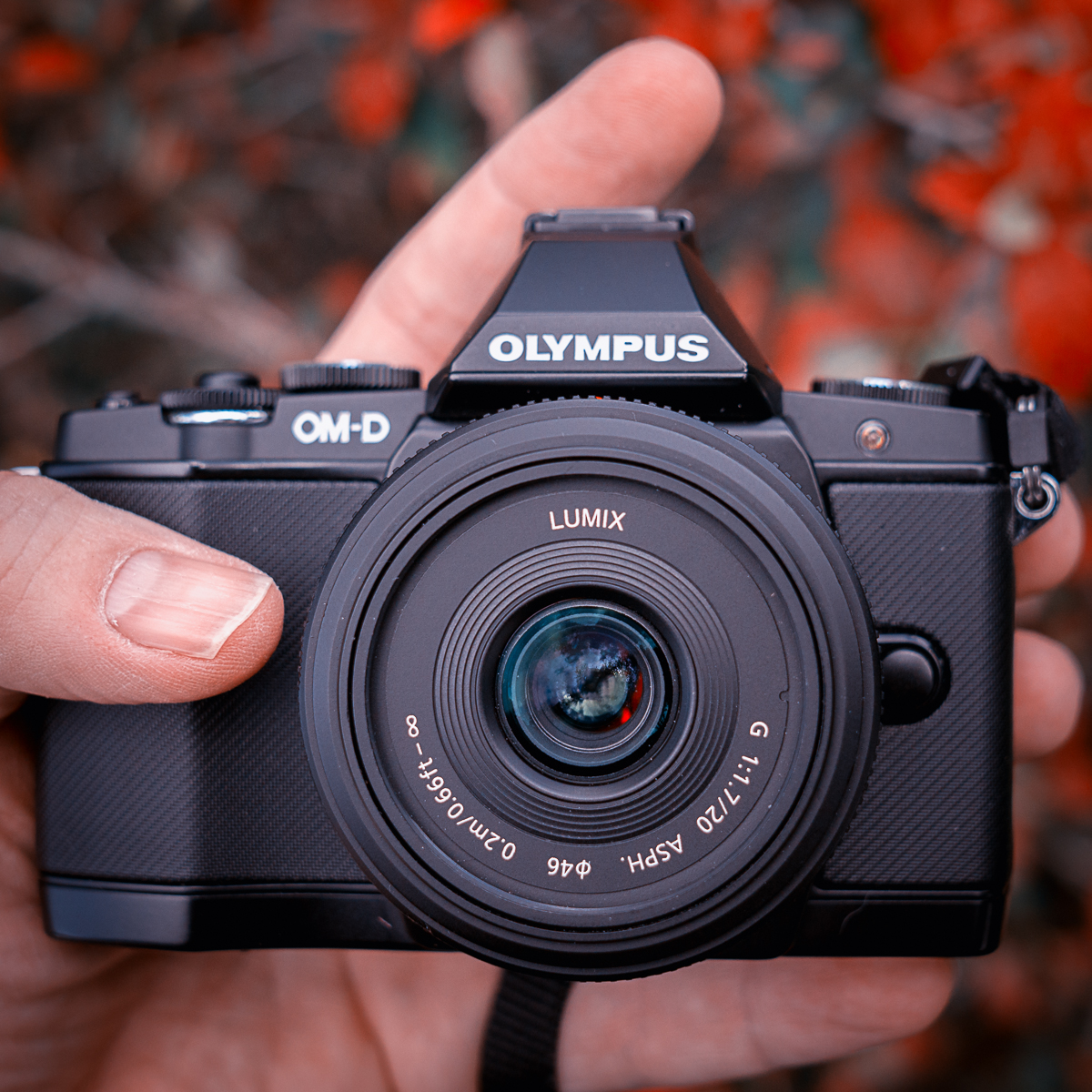 Thews Reviews Olympus Om D E M5 Review Mark Ii Kit 12 40mm Black