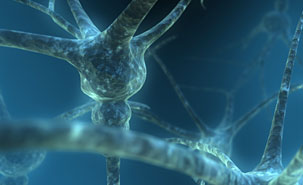 Neurons Alzheimers Patients Medical Science
