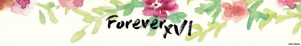 Forever XVI