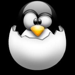 sistema operativo para diseñadores gráficos (dyne:bolic)