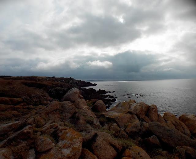 côte sauvage, île d'yeu, vendée, bullelodie