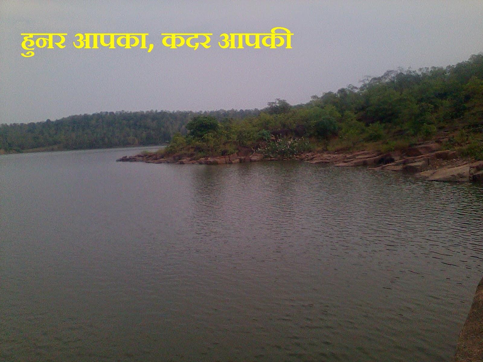 http://www.anilsahu.blogspot.in/2014/11/apne-hunar-ko-apni-pahchan-banaiyemotivational-article-in-hindi.html