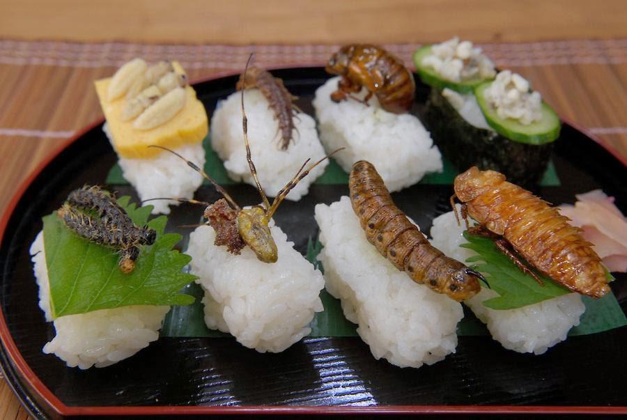 """Shusi côn trùng Những món ăn """"khó nuốt nhất"""" của Nhật Bản"""