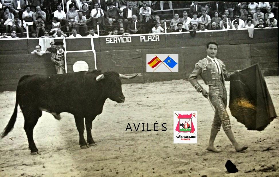 AVILÉS ASTURIAS TOROS