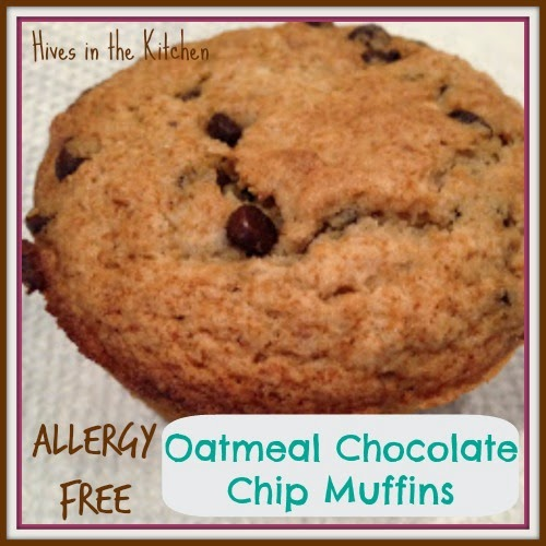 Hives in the Kitchen: Allergy Free Oatmeal Chocolate Chip ...