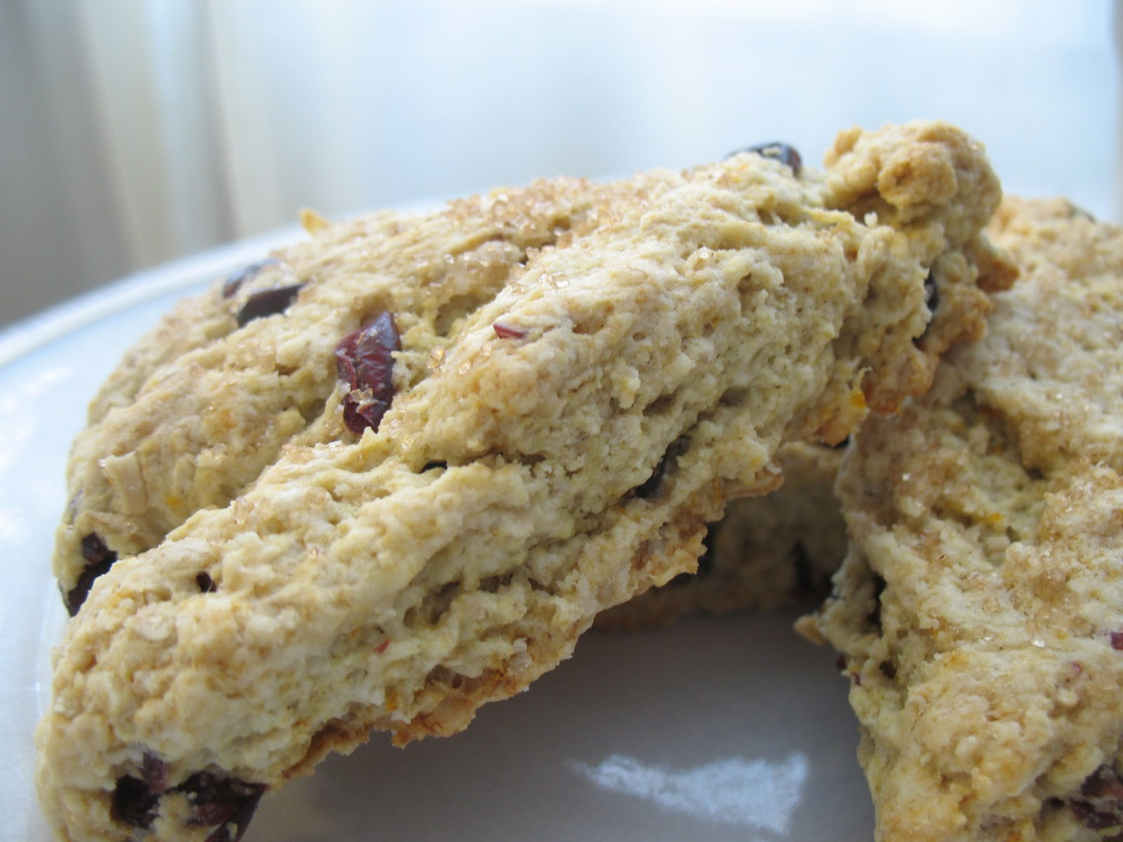 The Messy Apron: Cranberry Orange Oatmeal Scones