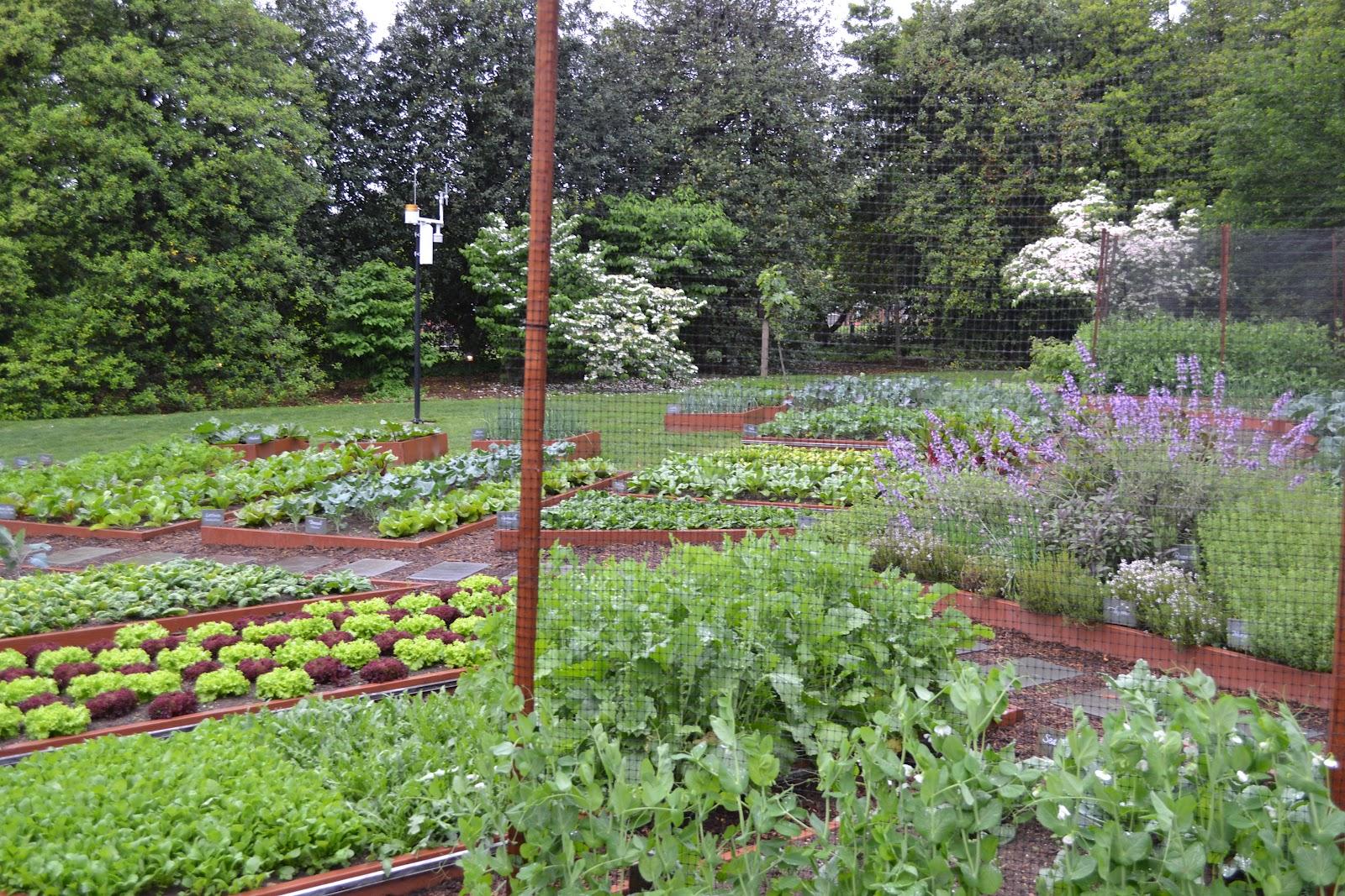 Indelible Insight White House Spring Garden Tour