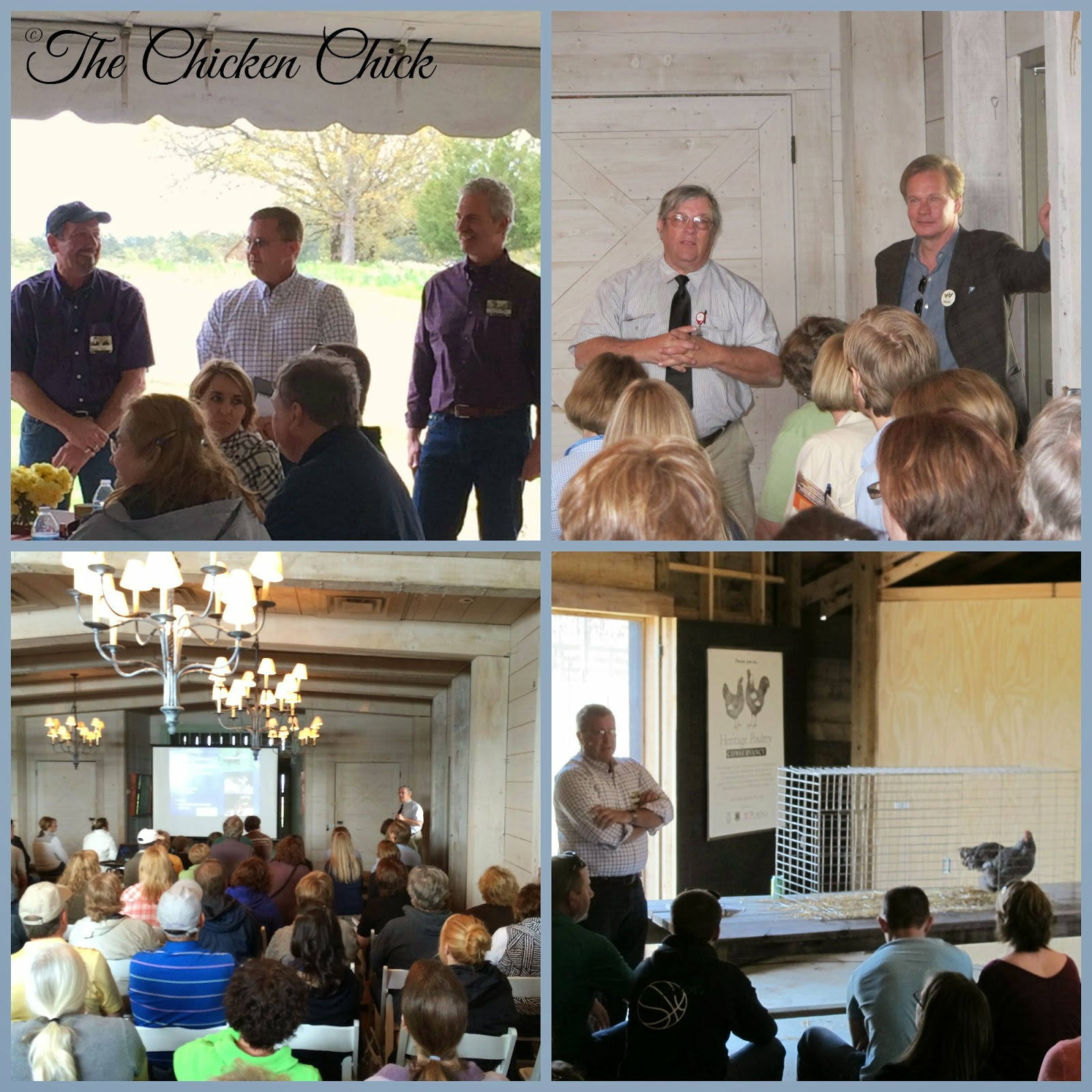 Poultry Workshop at P Allen Smith's Moss Mountain Farm