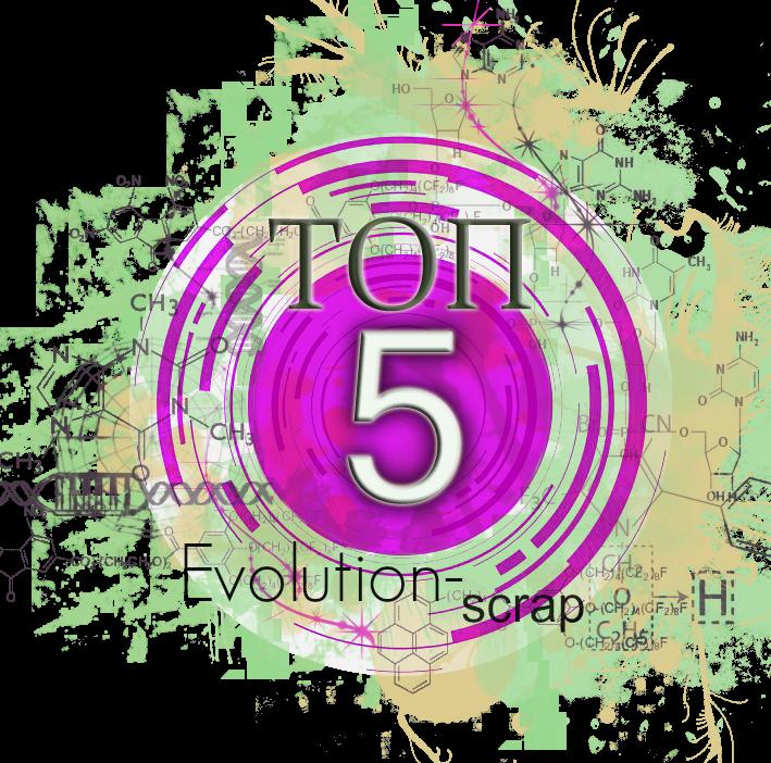 Evolution scrap