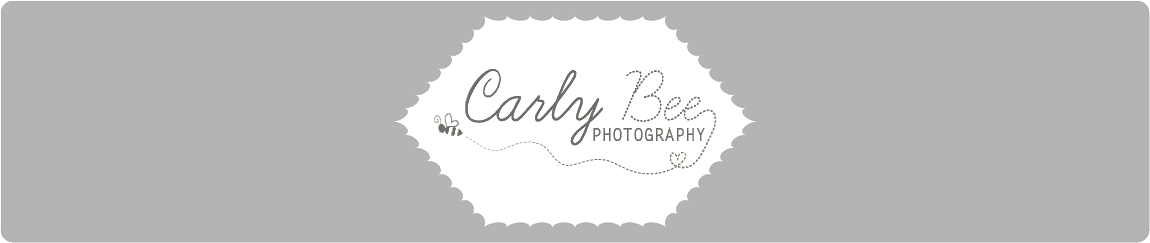 carly bee photography
