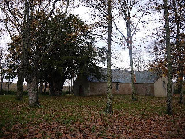 à Sainte-Marie l'if de Saint-jean l'épileur est classé parmi les arbres remarquables