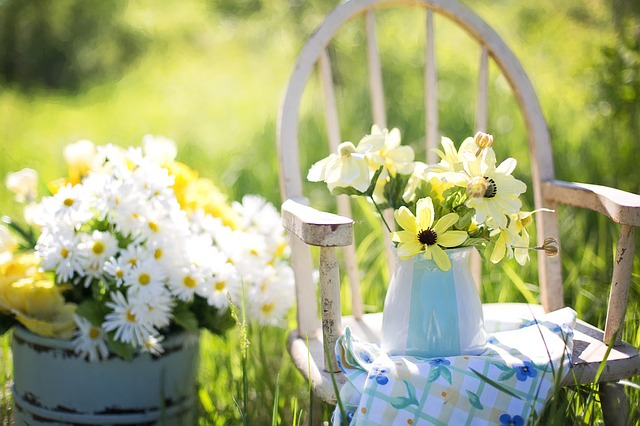 Cómo cuidar el jardín de tu vivienda modular en verano - Flores