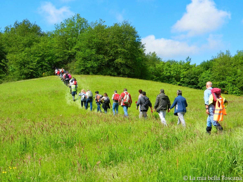 Trekking e camminate in Toscana