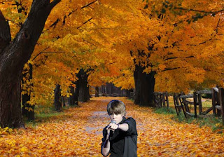 Justin Bieber in Concert free wallpapers in Classic Autumn Trees Park background