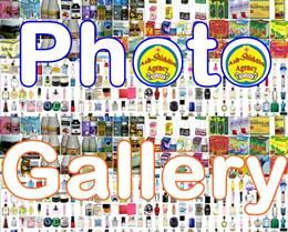[Download] Template Simple Blogger Album Galleri Fhoto