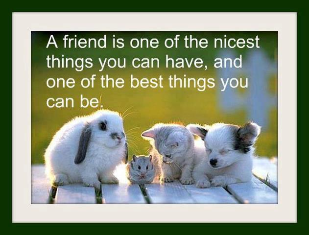 A friend is one of the nicest thing you can have, and one of the best things you can be.