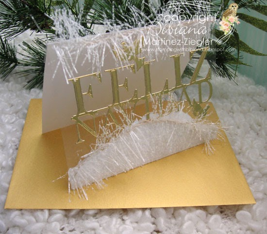 acetate snow photo holder card front