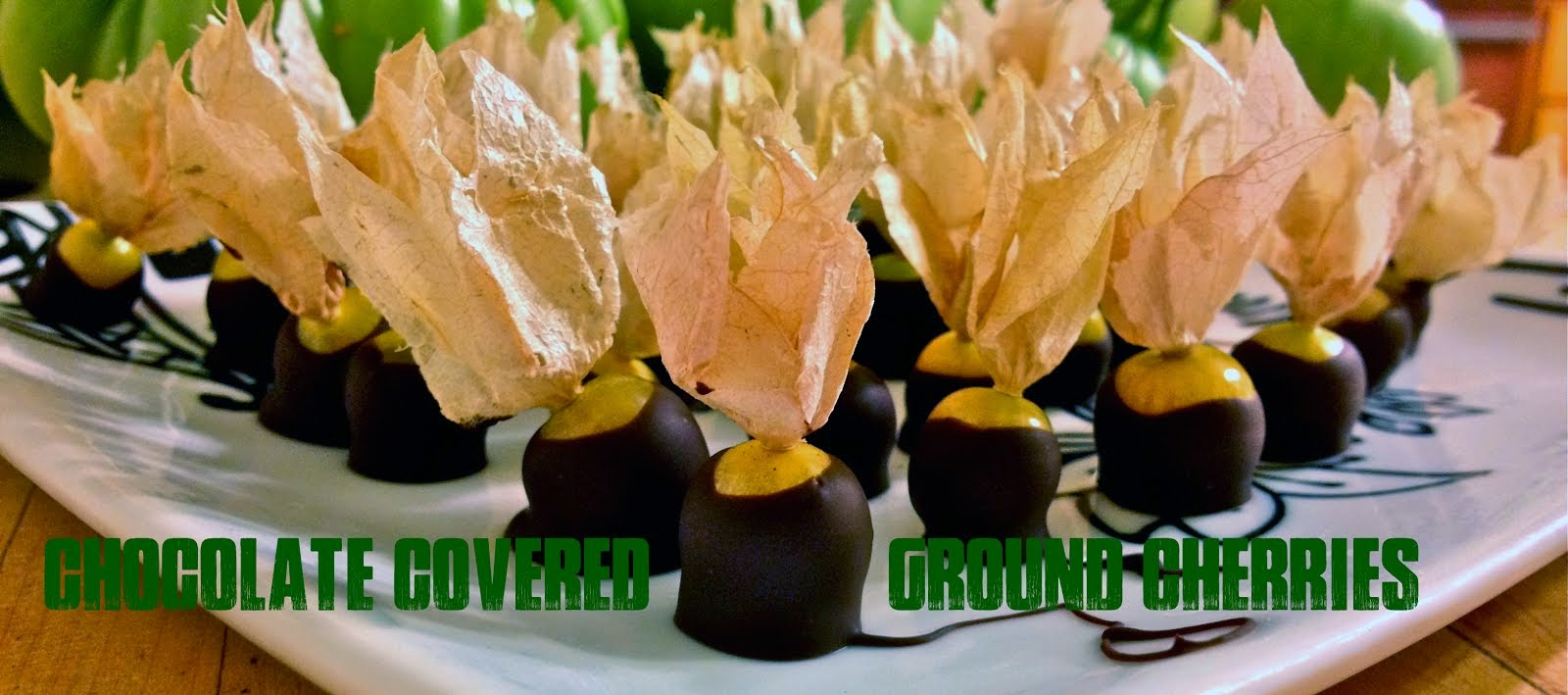 Chocolate Covered Ground Cherries