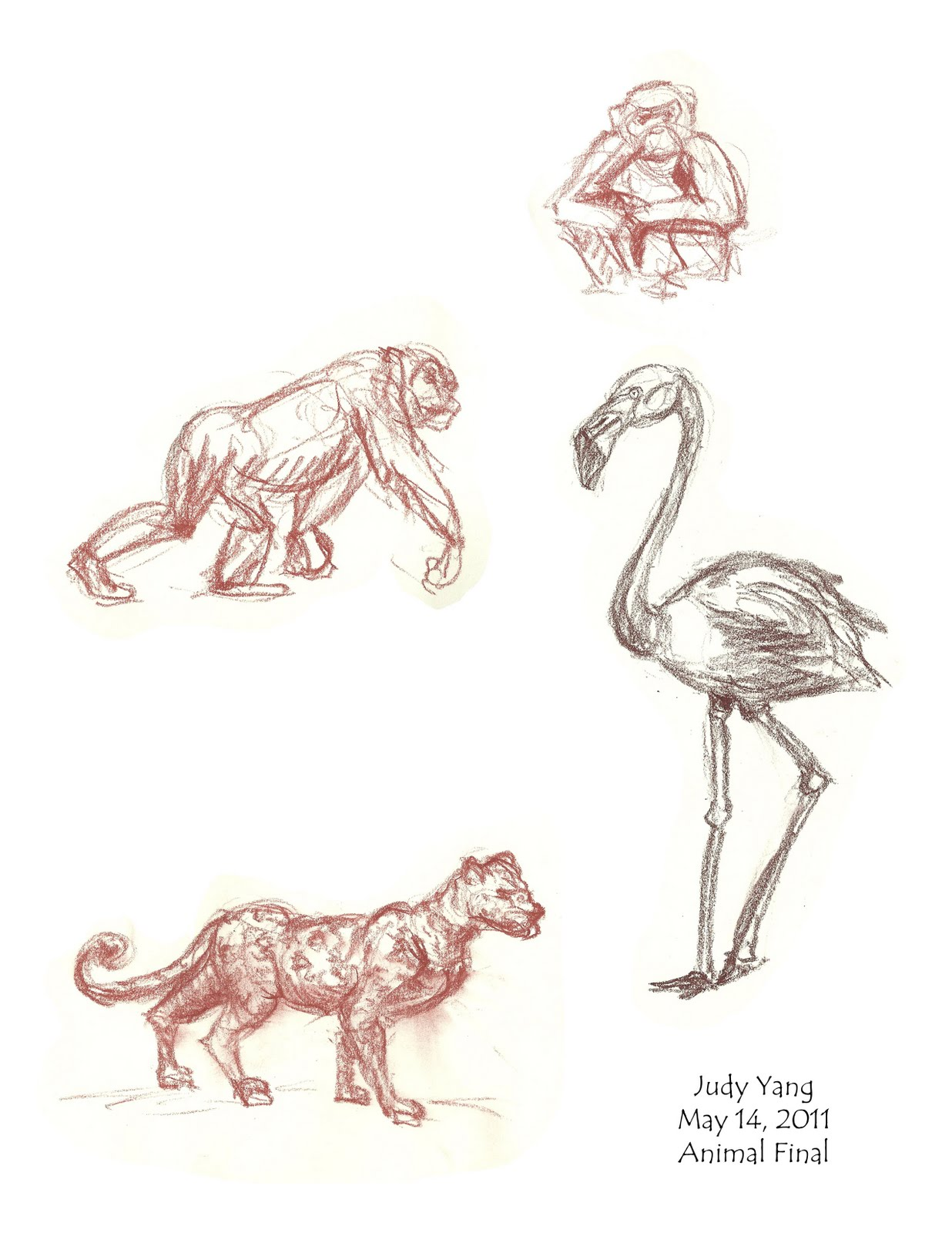 Scribble Drawing Animals : Scribble animal drawings