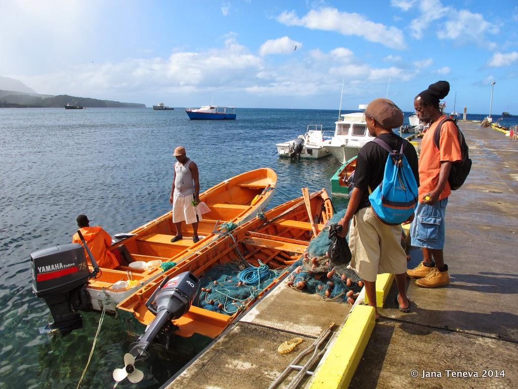 Dominica boat