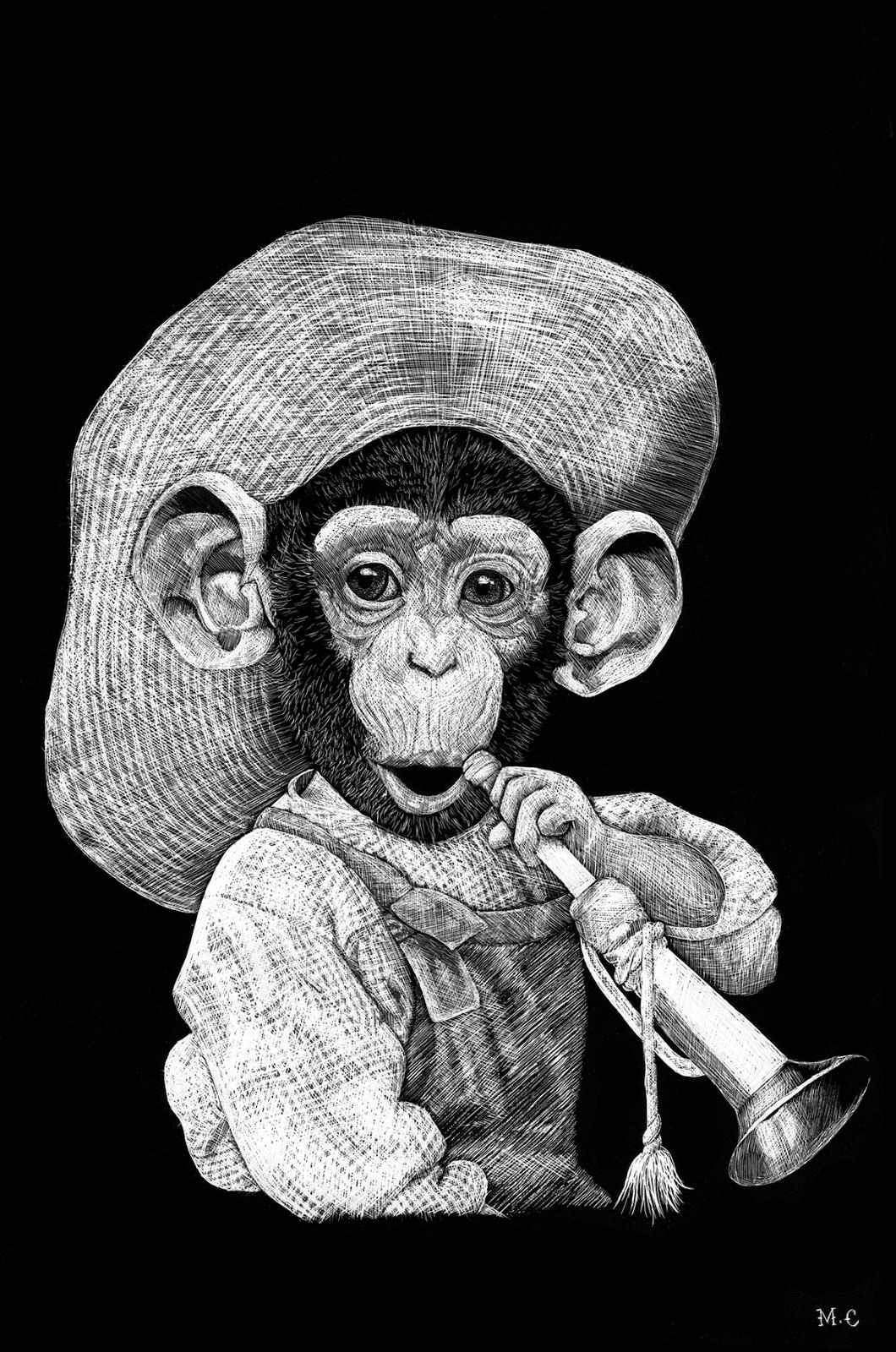 Marine Caleri - ilustração