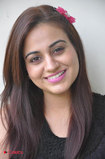 Aksha Latest Pictures at Rey Rey Success Meet  0007