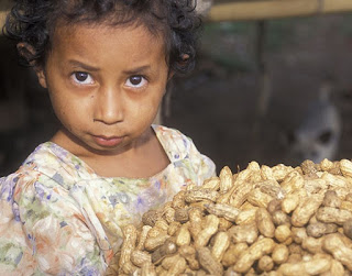 East Timorese child with peanuts from the family farm
