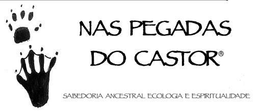 NAS PEGADAS DO CASTOR