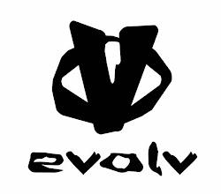 Evolv Climbing
