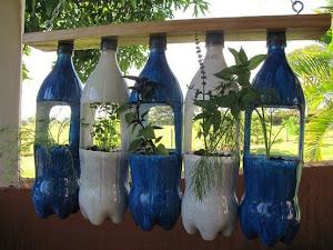 Reutilizando garrafas pet