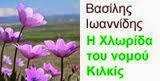 Χλωρίδα  ν. Κιλκίς