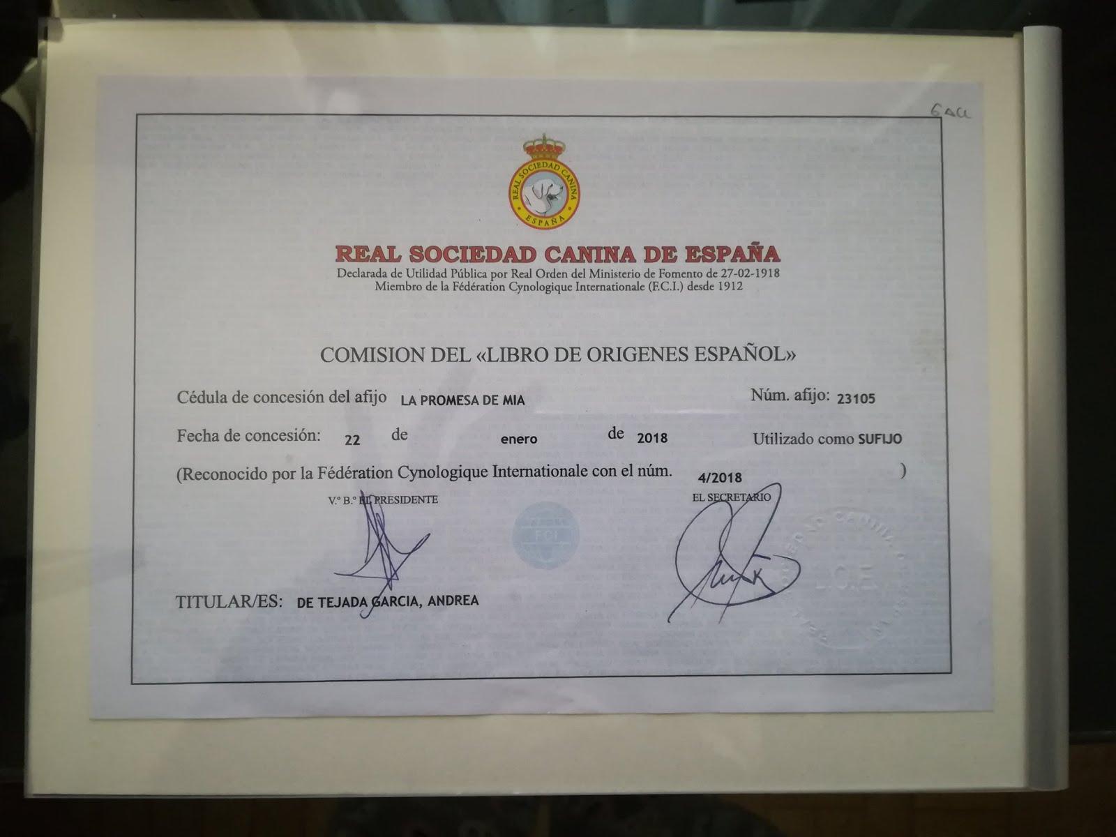 Nº AFIJO Y SOCIO RSC: 1305