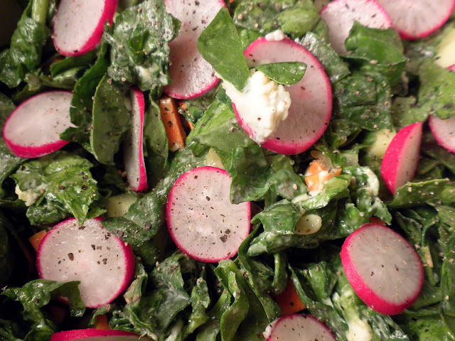 salad, radish, carrot, lettuce, blue cheese dressing