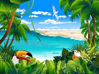 Tropical Animation