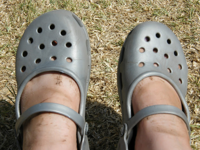 Filthy feet in mary jane Crocs