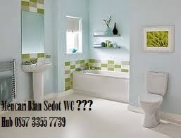 Sedot WC Babatan Call 085733557739