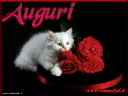 Ben noto Gatti: Cartoline gatti di Buon Compleanno BF54