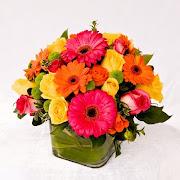 Mothers Day FlowersKelowna Florist