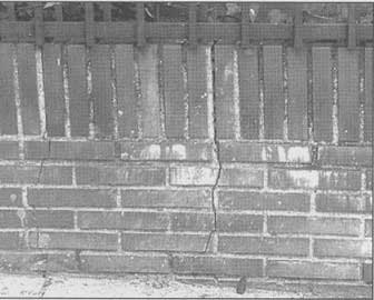 Rotura de un muro que ejercía de valla por raíces de árboles.