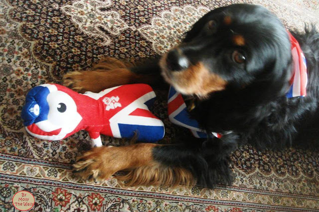 9B Molly The Wally Wrestles Wenlock The London 2012 Olympic Games Mascot.