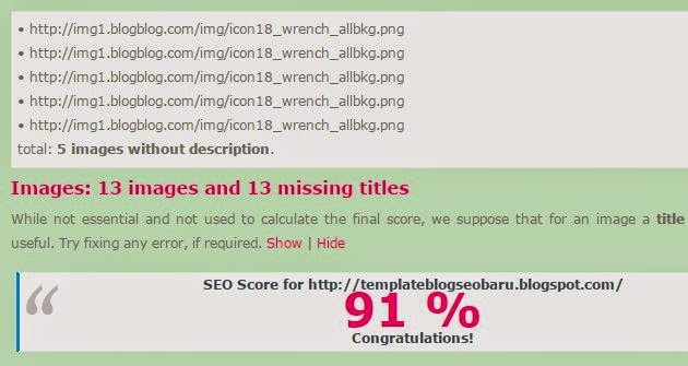 Skor SEO Blog 100%