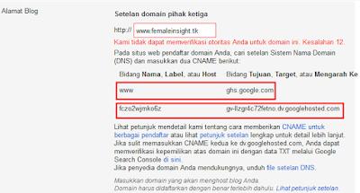 DNS Blogger