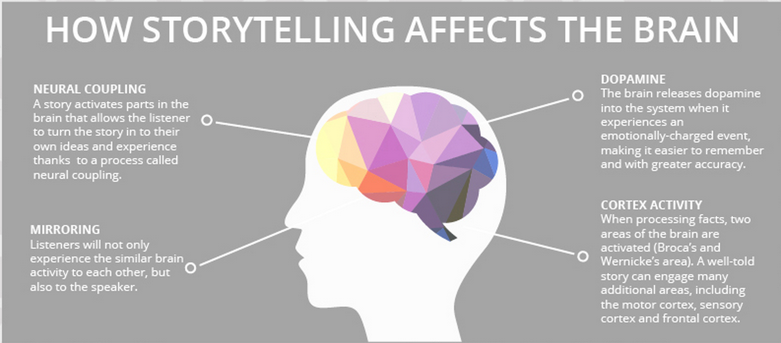 The Science Of Storytelling Visually Explained Educational
