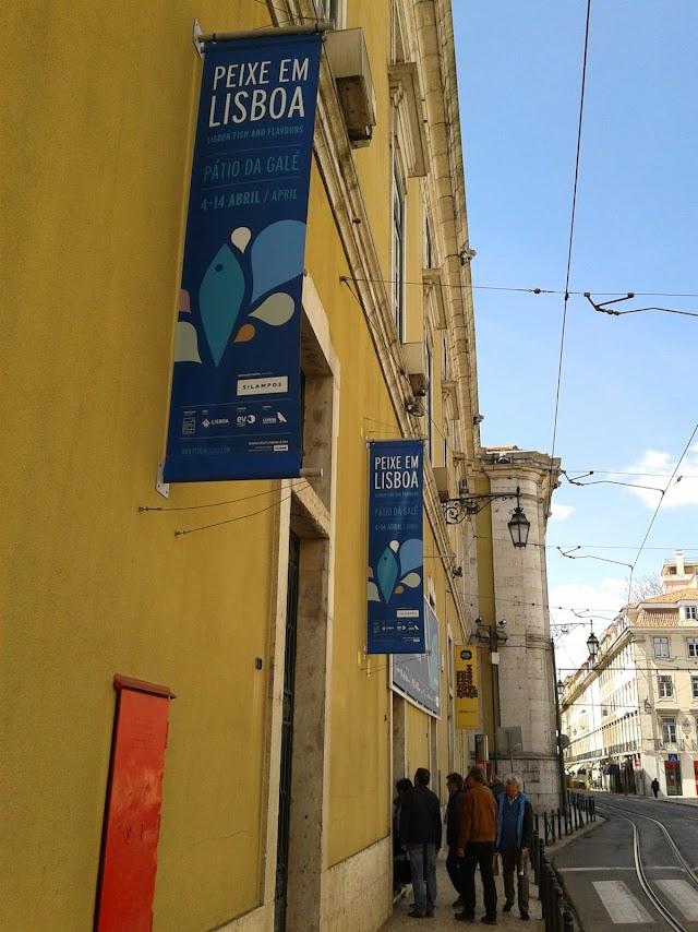 Peixe em Lisboa 2013 - reservarecomendada.blogspot.pt