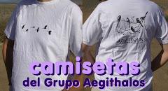 camisetas del Grupo Aegithalos