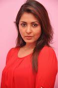 Madhu shalini latest glam pics-thumbnail-14