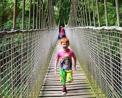 Alnwick garden treehouse bridge